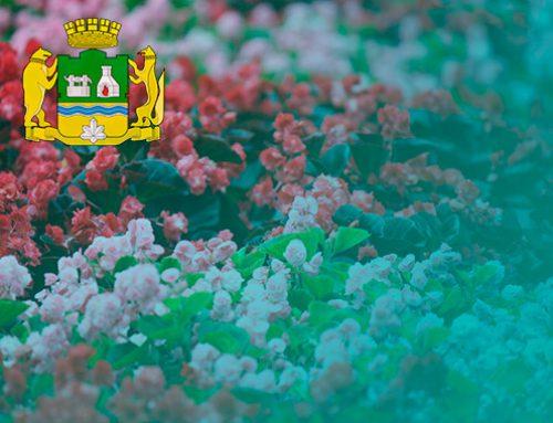 В 19 миллионов рублей обойдутся Екатеринбургу клумбы с цветами