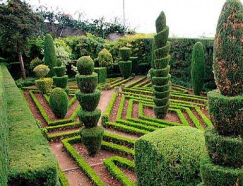 Украшения для сада – традиционный топиарий